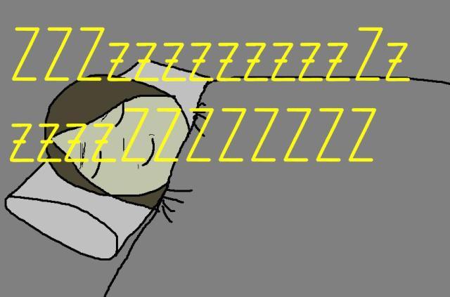 sleep1333